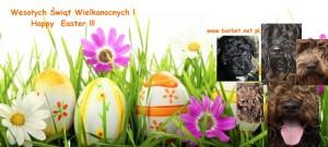 Wielkanoc2015 Piotra